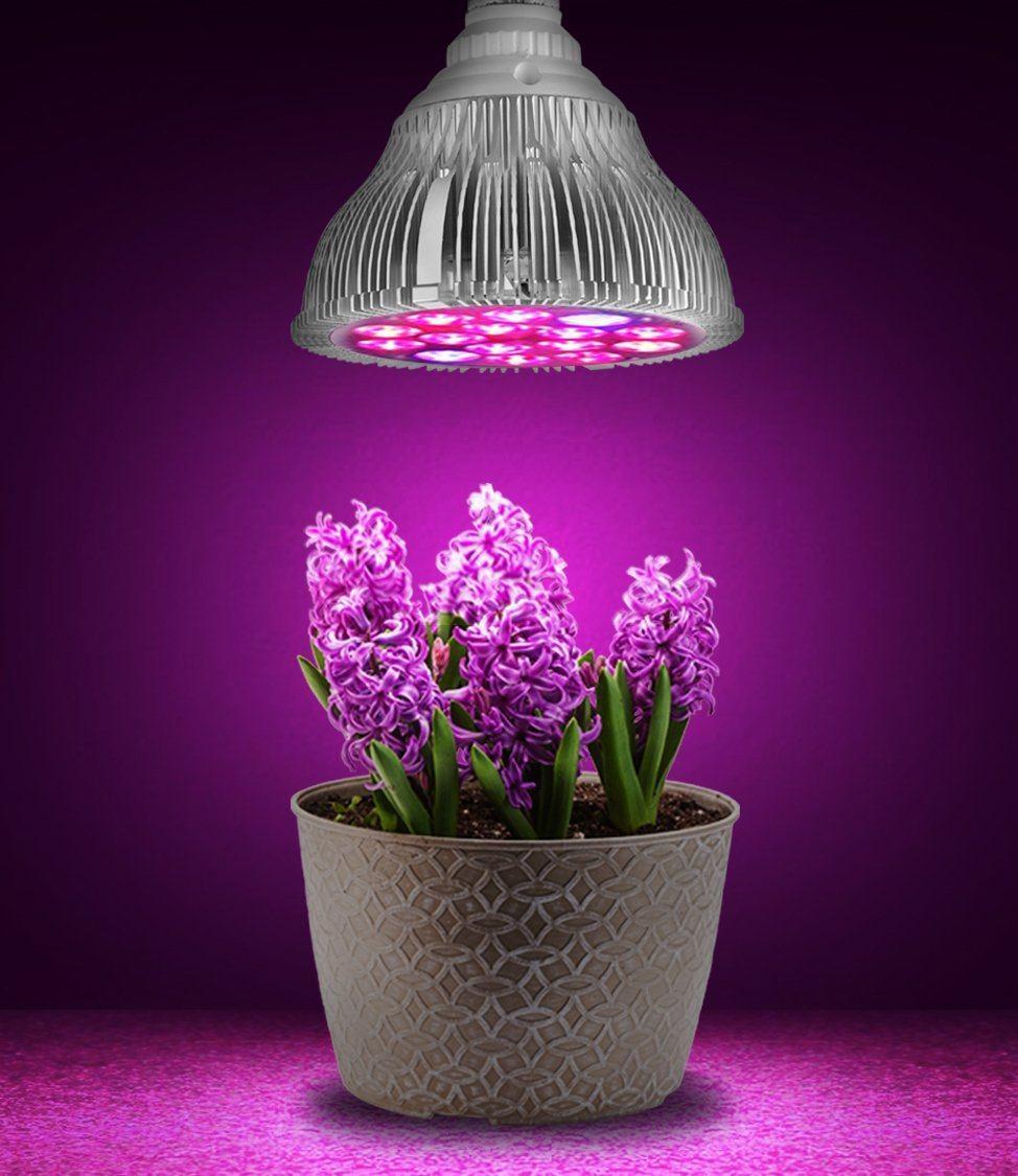Светодиодные для растений